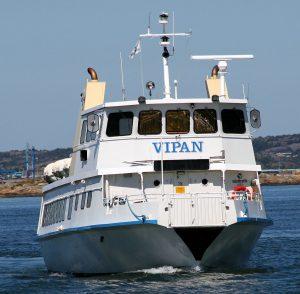 MS_Vipan